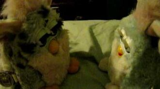 Furby talks to its baby!