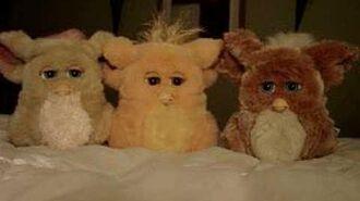 Furby Furby Furby 5