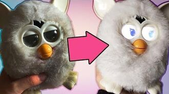 TUTORIAL How to Skin & Wash your 2012 2013 Furby