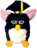 SLE-graduation-1