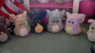 Furbys sing together