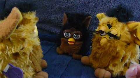 Furby A-loh and May-lah-kah