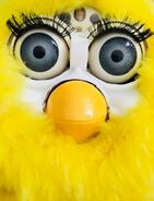 Habby (Furby Fake) | Official Furby Wiki | FANDOM powered by Wikia