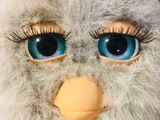 Furby Eye Colors