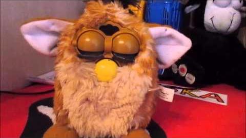Meine Furby Sammlung es sind insgesamt 10 Furbys