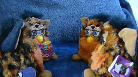 Videos of Color Change Furby's talking by Anush Yaranushian on YouTube