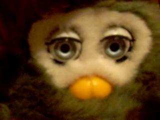 Furby ( fake )