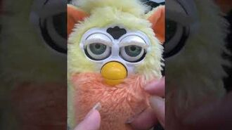 New Furby but help what is he ?