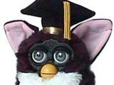1998 Furby Special Editions