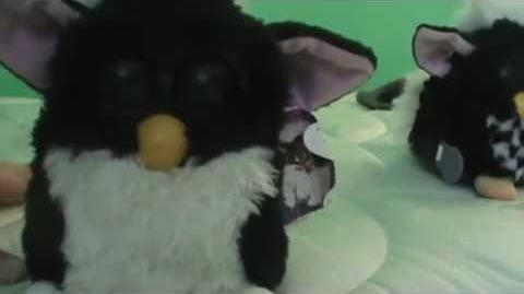 I found another furby at the flea market!