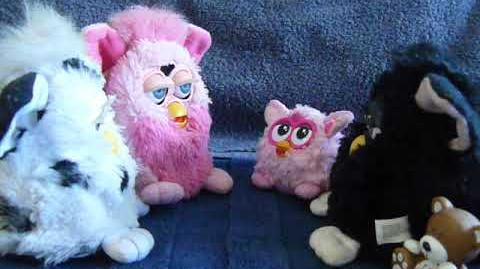 Furby May-may . Toh-dye and Mimi