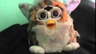 Furby Baby breaks out in song