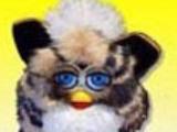 Tabby Cat Furby