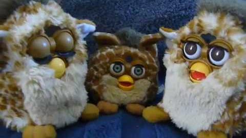 Furby A-may and O-bay