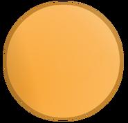 Circle NEW