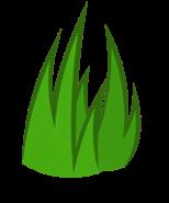 Grassy Body