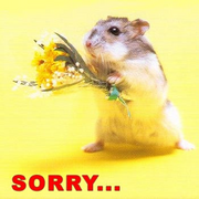 RES Sorry Hamster