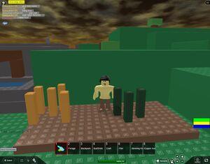RobloxScreenShot06102011 070647572