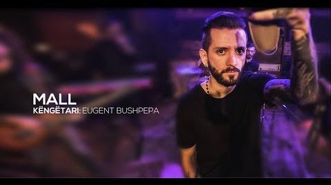 """EUGENT BUSHPEPA - MALL """"Festivali i 56 i Këngës në RTSH"""""""