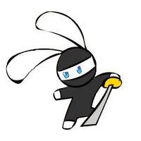Ninjabunny
