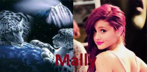 Mally 2