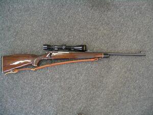 Remington700 21512515125
