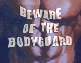 Title Beware Of The Bodyguard