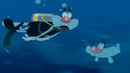 Scuba Diving 12