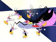 Hula-Dancing Birdies