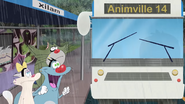 Animville Bus