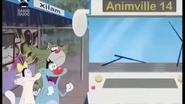Animville Bus