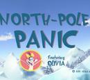 North-Pole Panic