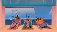 Sunbathing Cockroaches