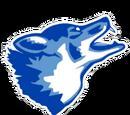 West Canaan Wizards/Coyotes