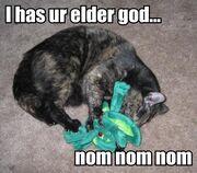Shay-elder god