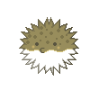 Porcupinefish result