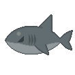 Shark result