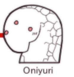Oniyurihead
