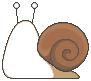 Snail result