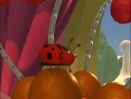 Ladybug on Jack's head
