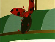 Ladybug on a light bulb