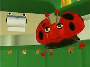 Ladybug in kitchen