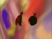 Mom Ladybug and Ladybug in Zowie's room