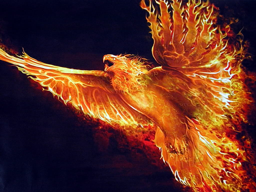 Image - Phoenix bird picture.jpg | Ologypedia | FANDOM powered by ...