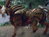 Colchis Bull