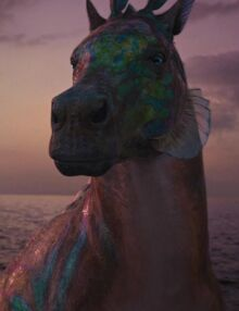 Rainbow film adaptation