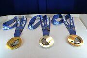 Olympics medal Sochi 2014