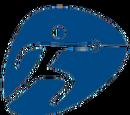 Fencing 2016