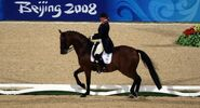 Equestrian-dressage