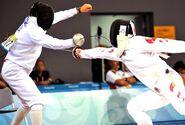 Bremmer fencing